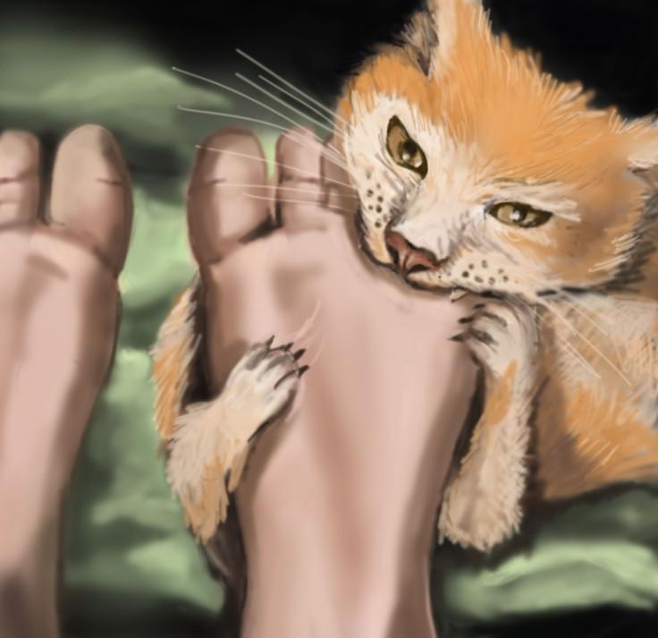 me&my-cat-3.jpg