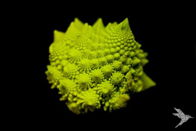 romanesco-web